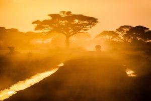 sehr gut organisierte Kenia safari und Badeurlaub